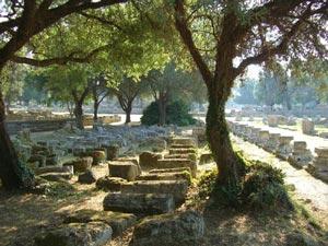 trees shading ruins at Olympia